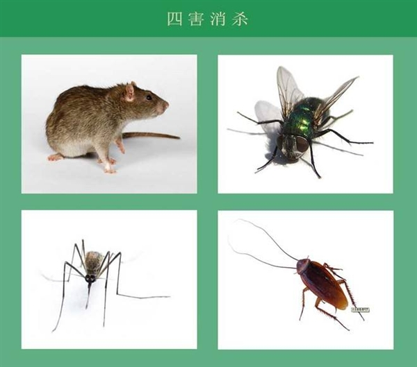 有害生物防治与管理